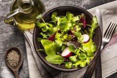 新鲜的沙拉蕃茄和混杂的绿色芝麻菜, mesclun, mache 免版税库存照片
