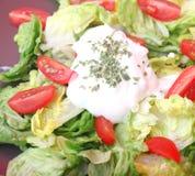 新鲜的沙拉蕃茄 免版税库存图片
