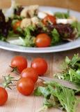 新鲜的沙拉 免版税库存图片