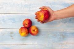 新鲜的油桃在手中和在蓝色木桌,顶视图上 库存图片