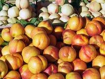 新鲜的油桃待售 库存照片