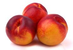 新鲜的油桃 库存图片