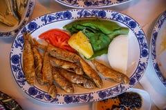新鲜的油煎的小鱼用烤土豆、蔬菜沙拉、蕃茄和葱在白色卵形板材有蓝色样式的在加拉塔桥梁 免版税库存照片