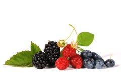 新鲜的浆果 库存照片