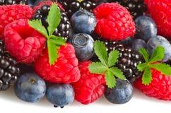 新鲜的浆果 免版税库存图片