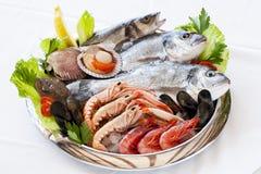 新鲜的海鲜。 免版税库存照片