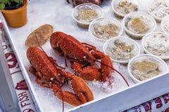 新鲜的海鲜龙虾待售市场 库存照片