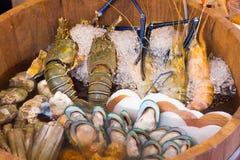新鲜的海鲜,龙虾,虾,贝类,在冰的牡蛎在木 库存照片