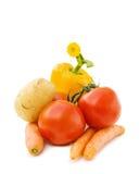 新鲜的混合蔬菜 免版税库存图片