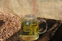 新鲜的清凉茶 免版税库存图片