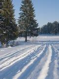 新鲜的滑雪雪跟踪 免版税库存图片