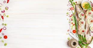 新鲜的炭灰鱼用草本、香料和成份鲜美烹调的在白色木背景,顶视图,横幅 库存图片