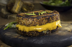 新鲜的烤乳酪三明治 库存图片