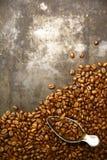 新鲜的烤咖啡豆 库存照片