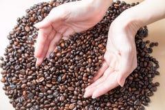 新鲜的烤有机咖啡豆在妇女手上 库存图片