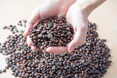 新鲜的烤有机咖啡豆在妇女手上 免版税库存图片