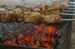 新鲜的烤肉串 免版税库存照片