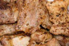 新鲜的烤肉开胃发光的片断  库存图片