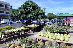 新鲜的热带水果在Savusavu销售Vanua Leavu海岛斐济 免版税库存照片