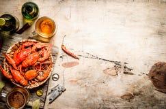 新鲜的煮沸的小龙虾用啤酒 库存图片
