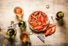 新鲜的煮沸的小龙虾用啤酒 免版税库存图片