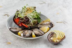 新鲜的牡蛎和日本沙拉服务用在白色石碗的切的和柠檬调味汁在washi日文报纸 库存照片