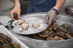 新鲜的牡蛎在一只手上对负开放与一把牡蛎刀子用牡蛎 图库摄影
