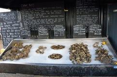 新鲜的牡蛎待售Whitstable 库存照片