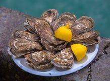 新鲜的牡蛎用在Cancale的柠檬,法国 库存图片