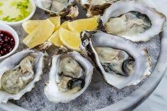 新鲜的牡蛎盛肉盘用调味汁和柠檬 免版税图库摄影