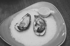 新鲜的牡蛎贝类在豪华餐馆 吃牡蛎用柠檬和被击碎的冰 与Ω 3的健康纤巧 免版税库存图片