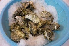 新鲜的牡蛎 图库摄影