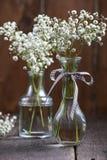 新鲜的狂放的在金属螺盖玻璃瓶的草甸白花 库存照片