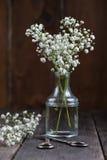 新鲜的狂放的在金属螺盖玻璃瓶的草甸白花 库存图片