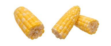 新鲜的玉米二张视图  图库摄影