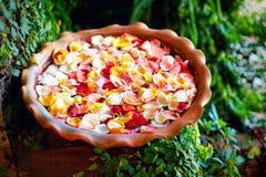 新鲜的玫瑰花瓣在水中滚保龄球,夏天庭院 库存照片