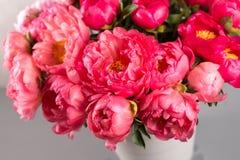 新鲜的珊瑚牡丹花束在木桌和灰色背景上的花瓶开花 花CoralSharm等级  库存照片