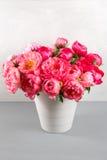 新鲜的珊瑚牡丹花束在木桌和灰色背景上的花瓶开花 花CoralSharm等级  免版税图库摄影