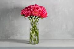 新鲜的珊瑚牡丹花束在木桌和灰色背景上的玻璃花瓶开花 花CoralSharm等级  免版税库存照片