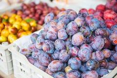 新鲜的甜李子在地方市场上 图库摄影