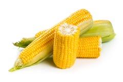 新鲜的甜玉米 免版税库存图片