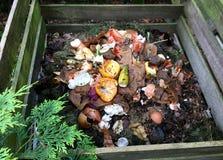 新鲜的生物废物和天然肥料 库存图片