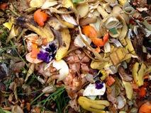 新鲜的生物废物和天然肥料 免版税库存图片