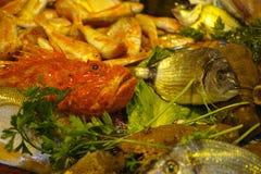 新鲜的生鱼Fisherman's抓住从爱琴海,西西里岛, I的 库存图片
