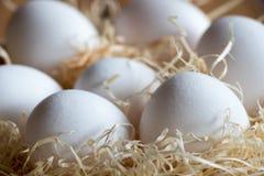 新鲜的白色未煮过的鸡蛋-简单的土气背景 免版税库存图片