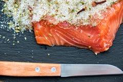 新鲜的盐味的三文鱼 库存照片