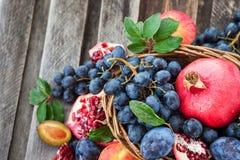 新鲜的秋天果子 库存照片