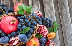 新鲜的秋天果子 免版税库存图片