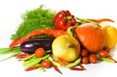新鲜的种类蔬菜 库存照片