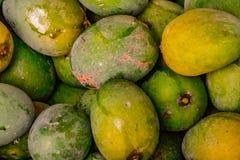 新鲜的立即可食的芒果果子 免版税库存照片